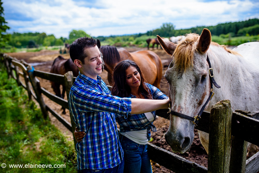 Horse and Barn Toronto Engagement Photography